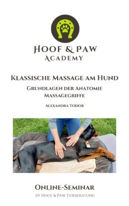 "Picture of Online-Seminar ""Hundemassage"""